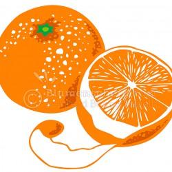 orangen_wz